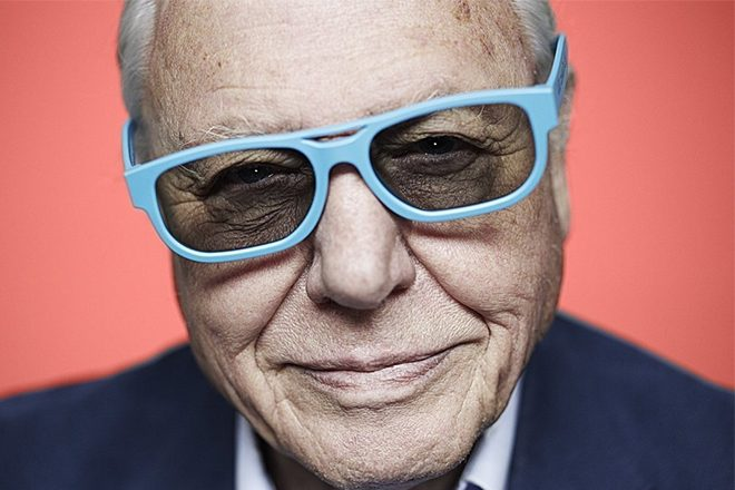 ​David Attenborough themed raves are taking the UK by storm