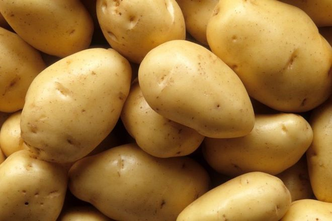Man on five-day ecstasy binge was caught filling hotel bath with potatoes