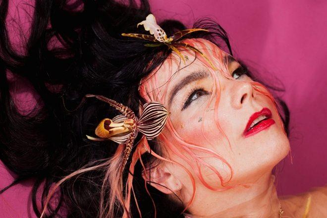 Bluedot Festival 2020 announces line-up, Björk headlines