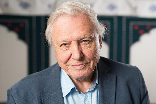 Sir David Attenborough is looking for a producer to remix one of his 70-year-old field recordings