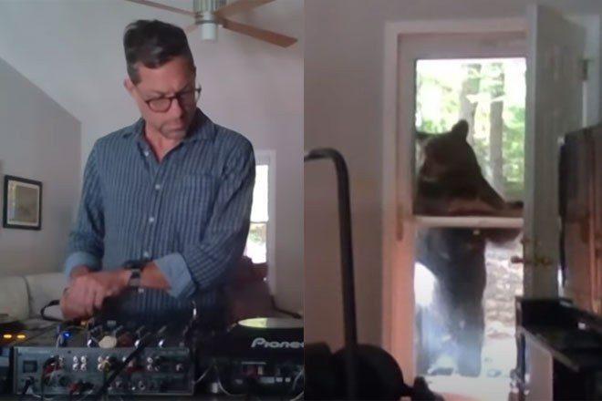 A bear interrupted a DJ during a recent livestream