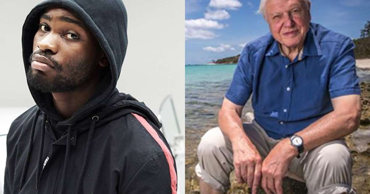 Dave and David Attenborough link up on new BBC documentary