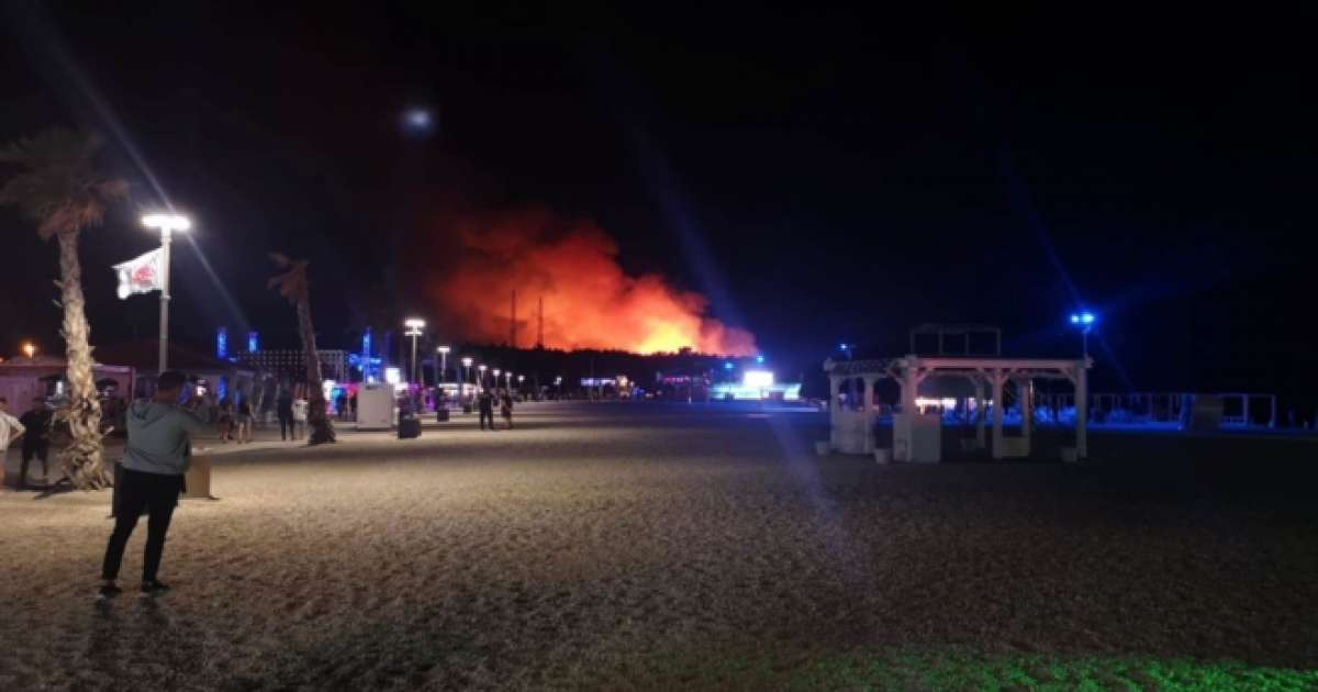 Fresh Island Festival in Croatia evacuated due to forest fire