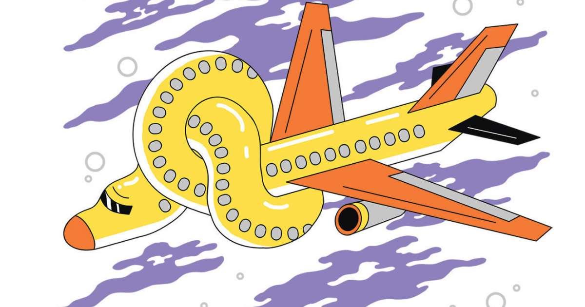 The Secret DJ tells a story of taking magic mushrooms on a flight to