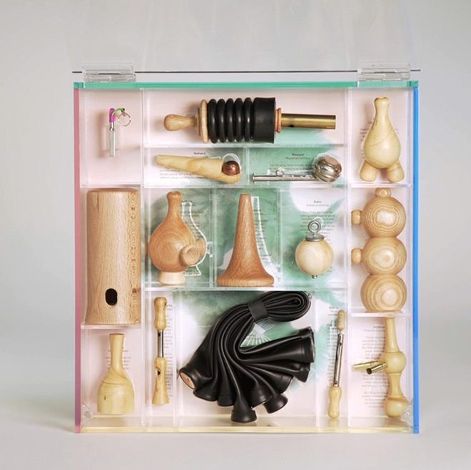 Björk's 'Utopia' boxset will contain birdcall flutes, obviously